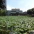 광동교육대학교 중국어 교실